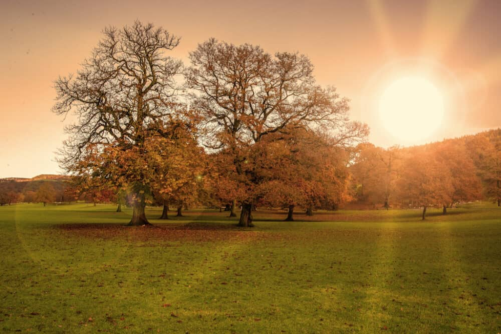 Chatsworth House Estate Fall