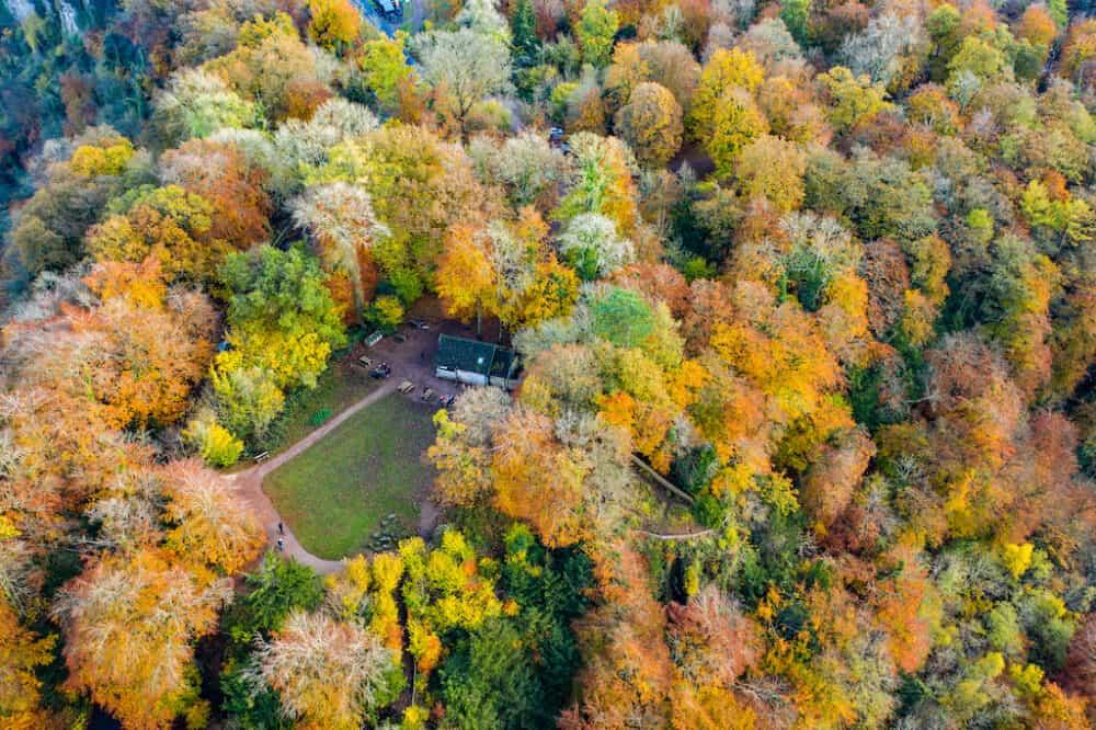 Herefordshire Autumn
