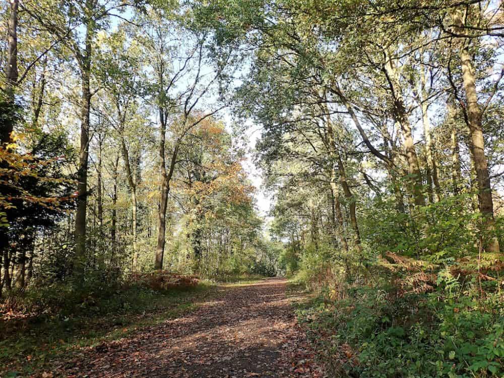 Aldenham Village and Country Park