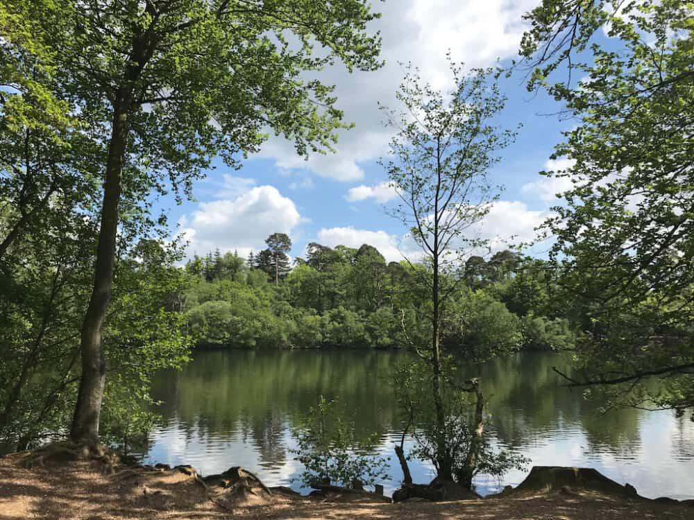 Black Park Buckinghamshire