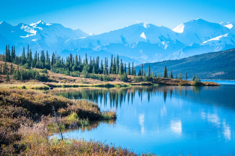 Denali National Park and Wonder lake