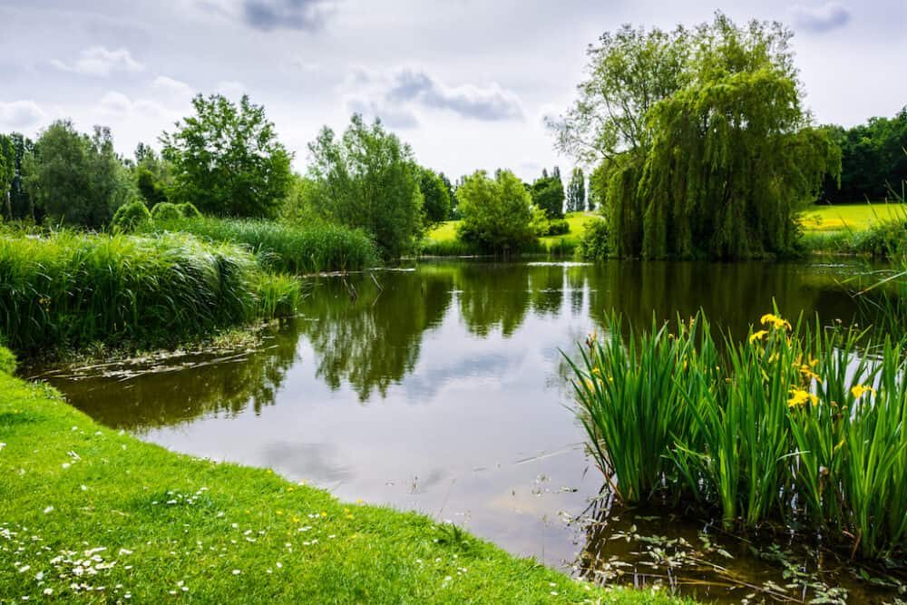 Emberton Park - beautiful places to visit in Buckinghamshire
