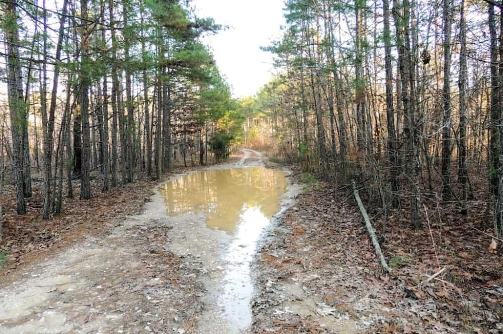 Ouachita National Recreation Trail
