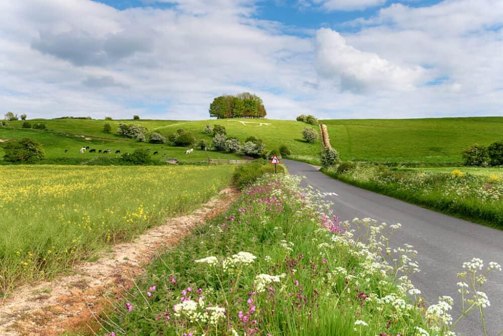 Ridgeway National Trail Wiltshire