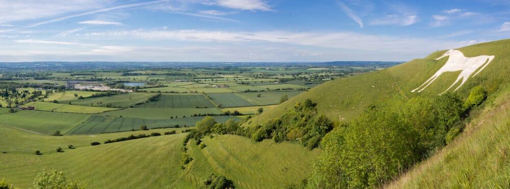 Salisbury Plain Wiltshire