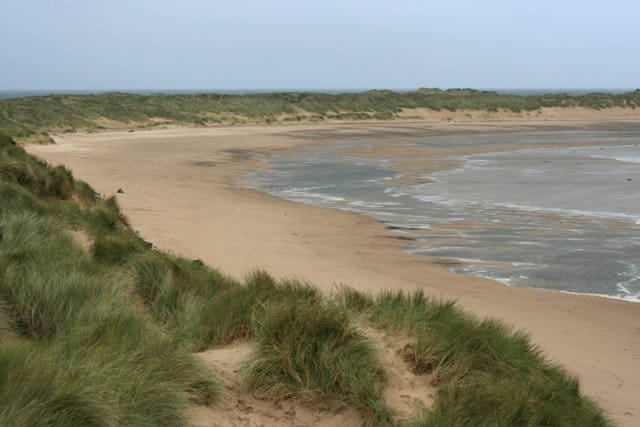 Teesmouth national nature reserve