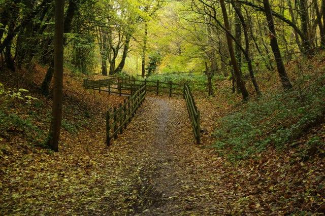 Wheathampstead Heritage Trail