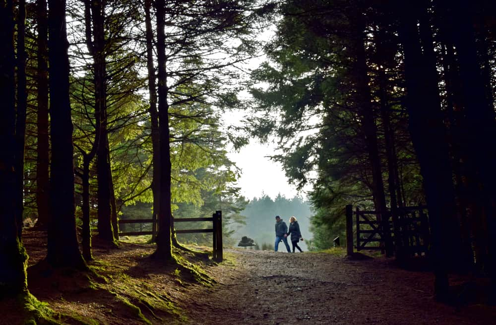 Beacon Fell - beauty spots in Lancashire