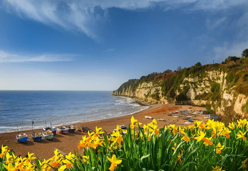 Beer -best places to visit in Devon