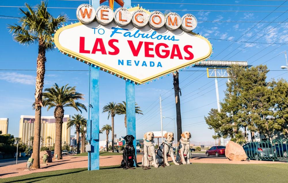 Best dog friendly restaurants Las Vegas .jpg