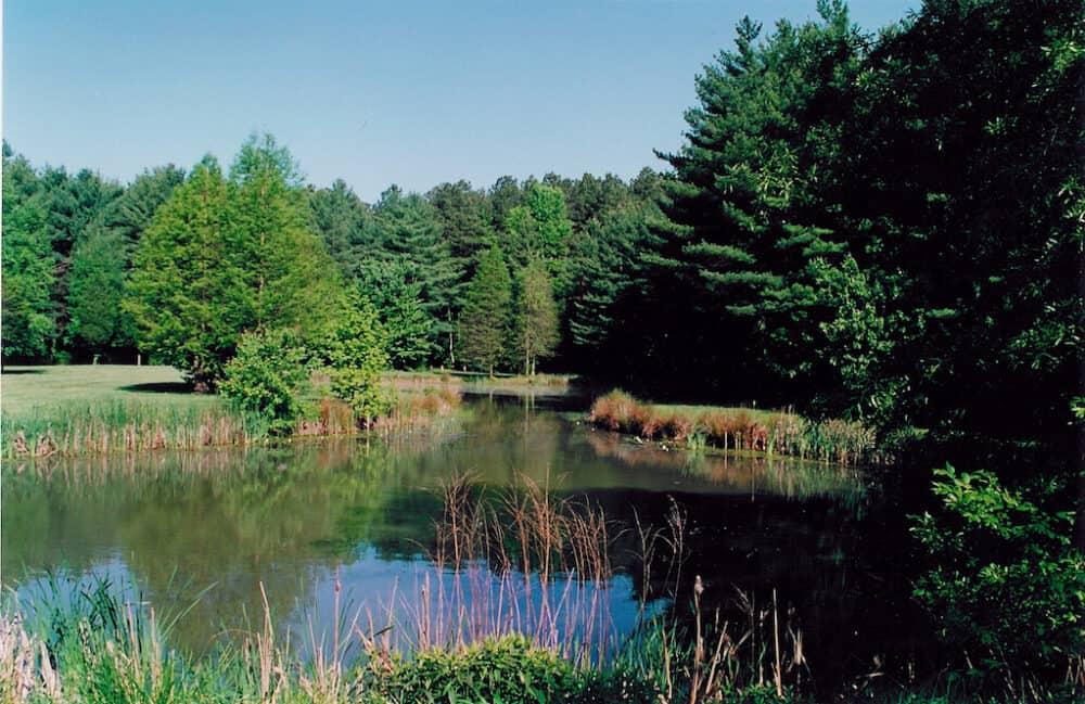 Blackbird Creek Delaware