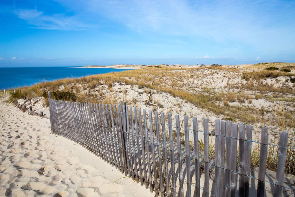 Cape Henlopen - best places to visit in Delaware