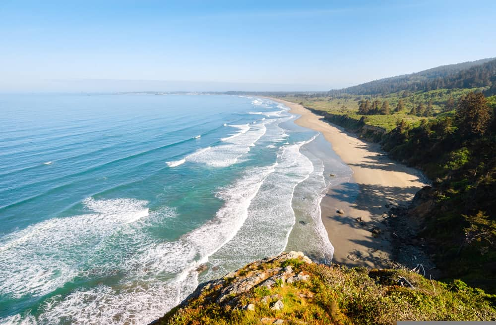 Redwood National Park Beach