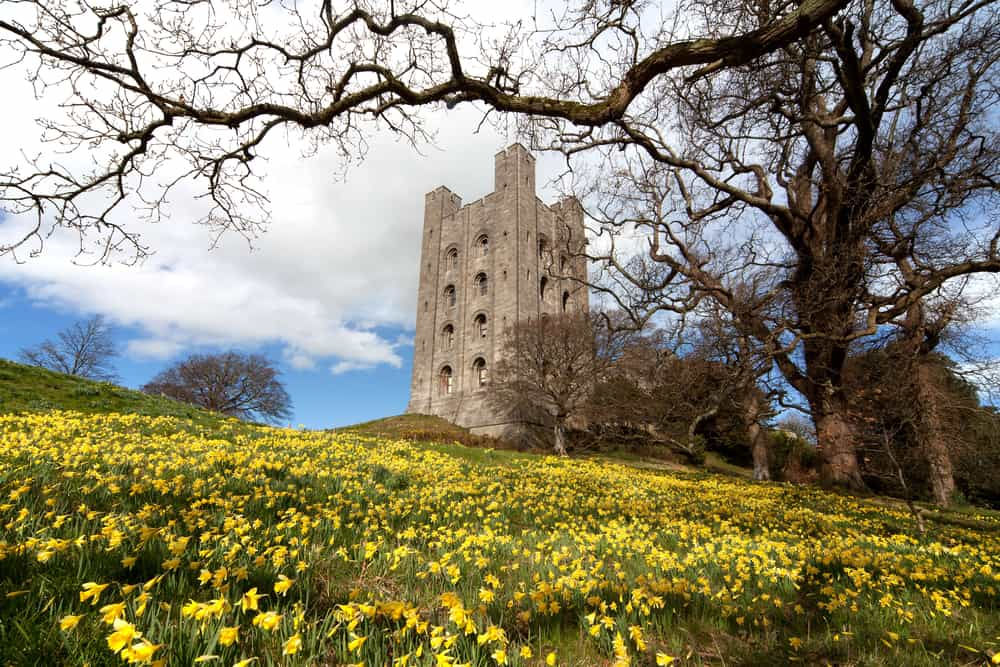 Bangor Castle Northern Ireland