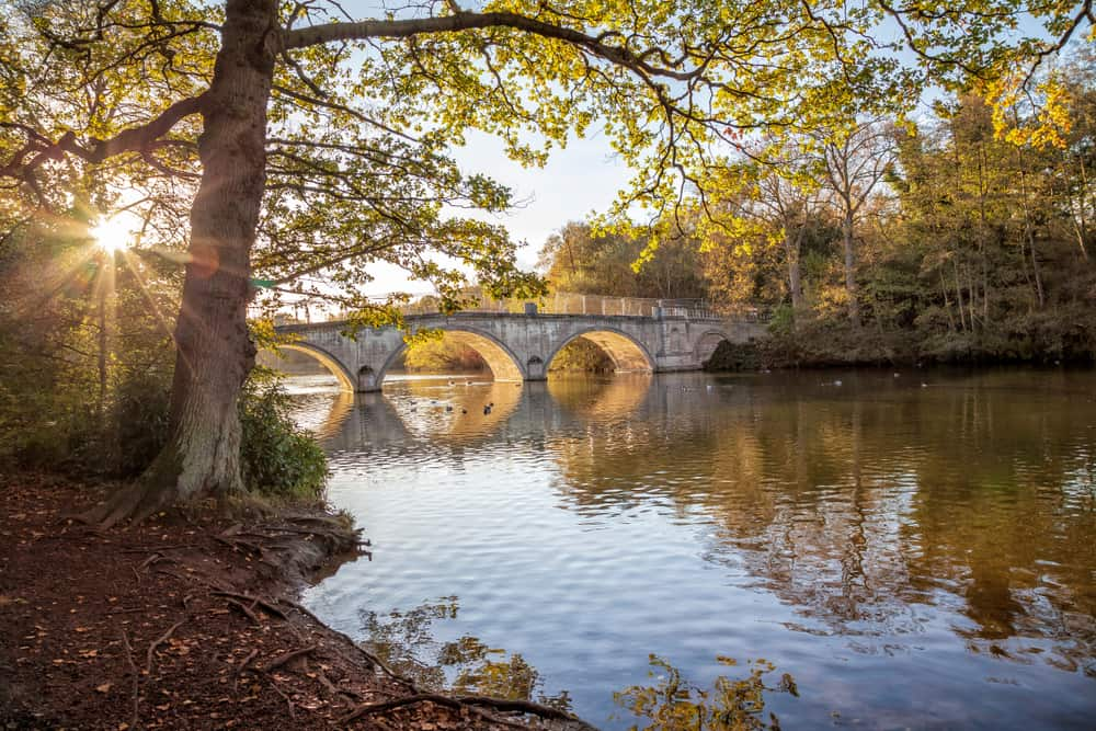 Clumber Park - most beautiful places to visit in Nottinghamshire