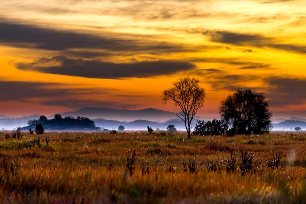 Flint Hills - best places to visit in Kansas