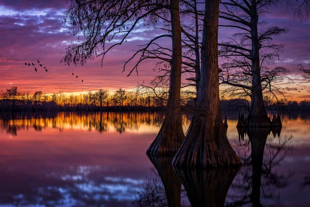 Lake Horseshoe Illinois