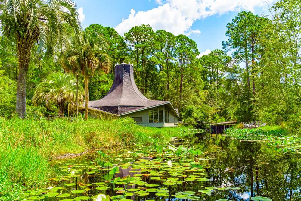Okefenokee Swamp - tourist destinations in Georgia