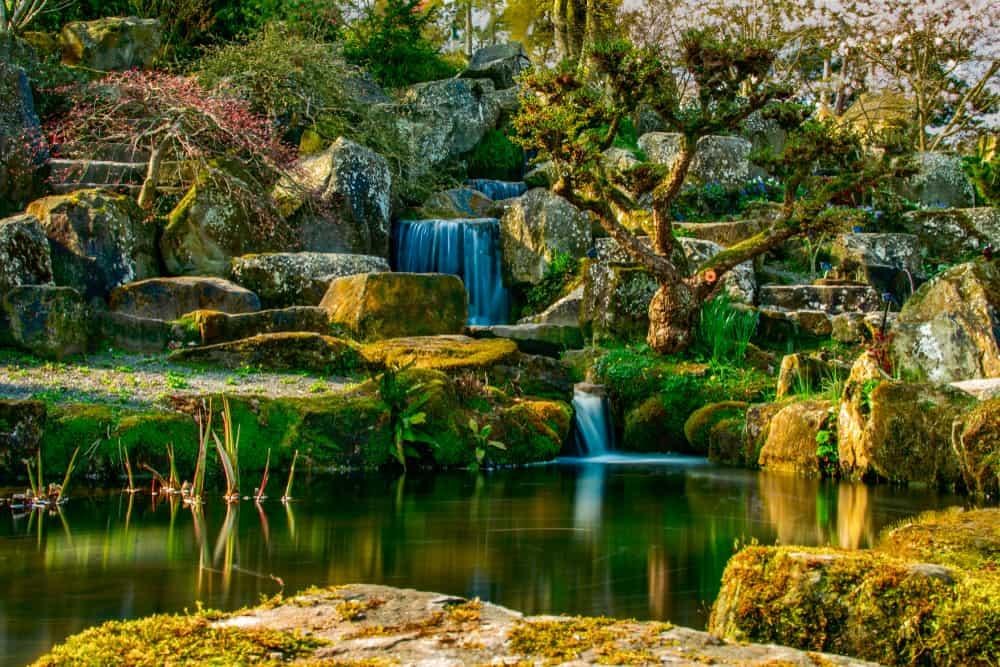 Wisley Gardens Surrey