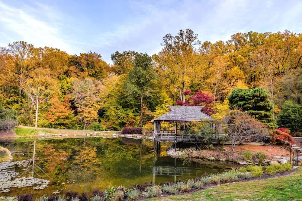 Brookside Gardens Maryland