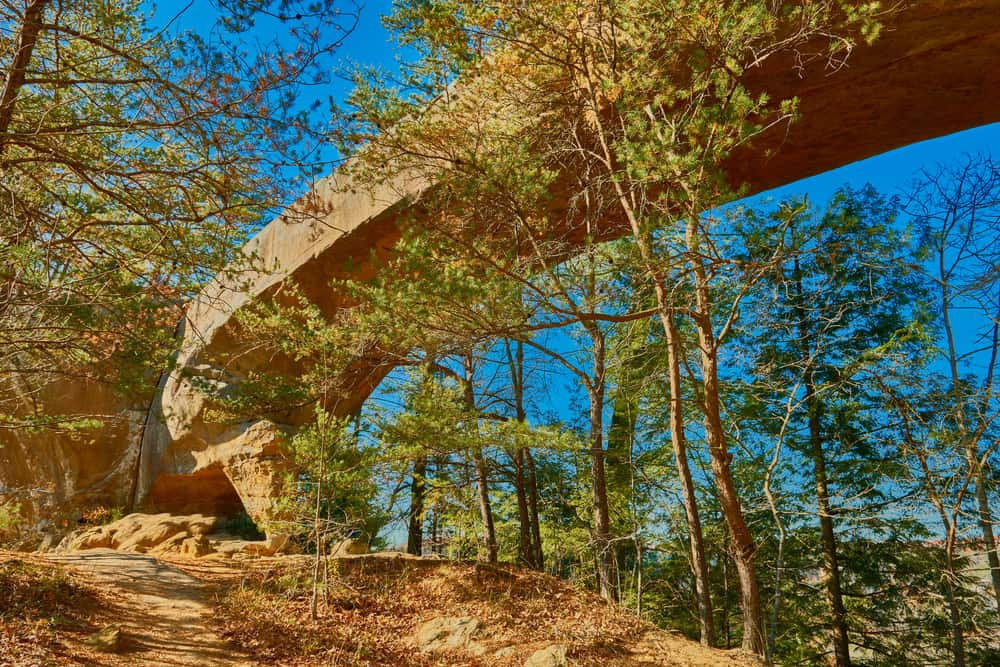 Red River Gorge and Natural Bridge