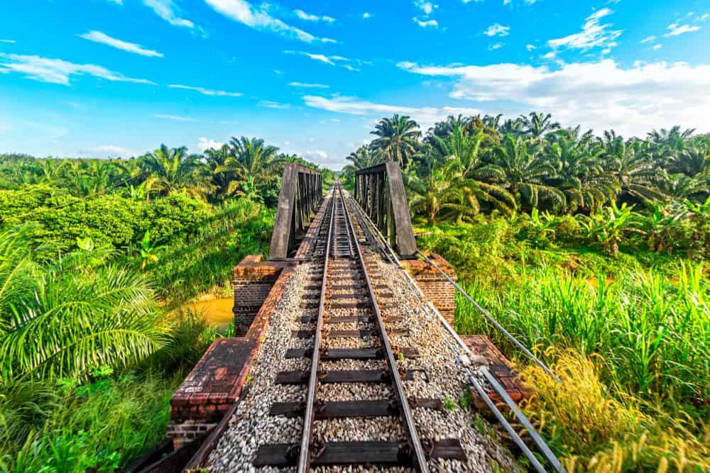 The Jungle Railway Malaysia