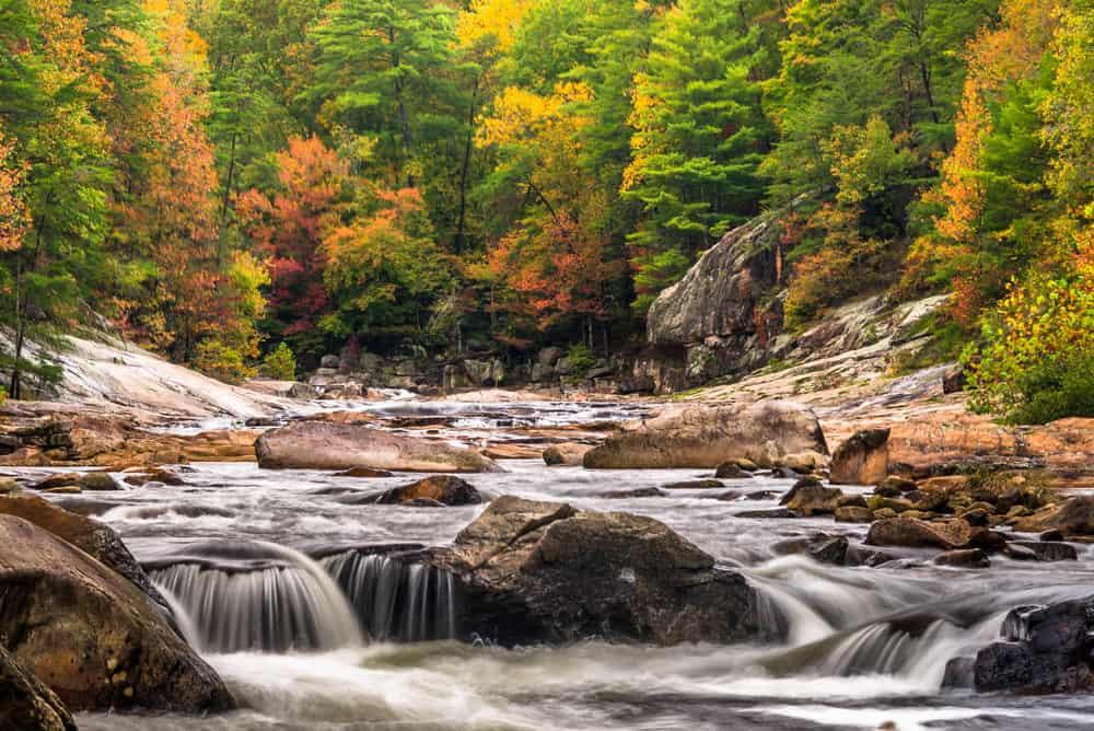 Appalachian Trail NC