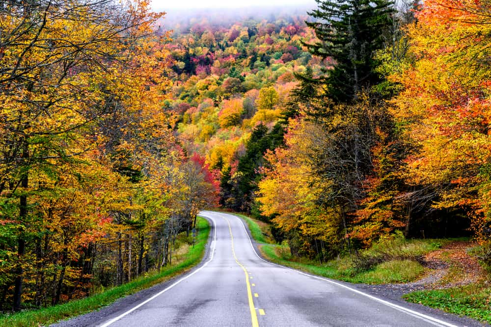 Beautiful places to visit in West Virginia