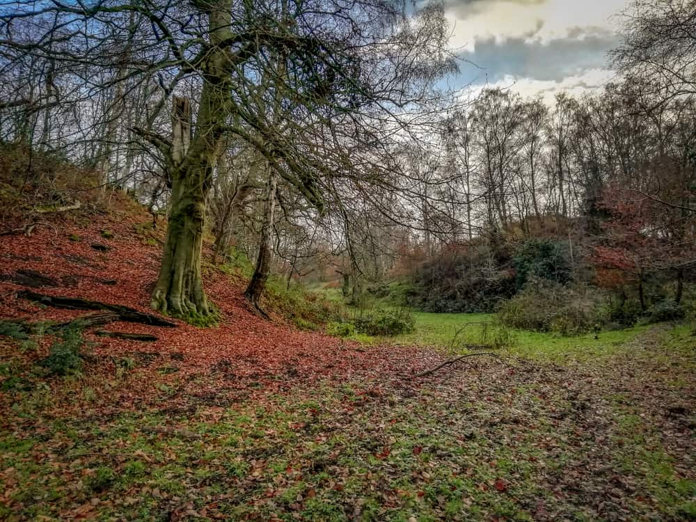 Dimmingsdale Staffordshire