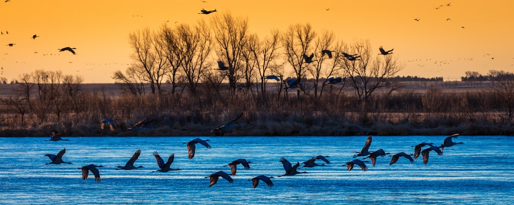Platte River Nebraska