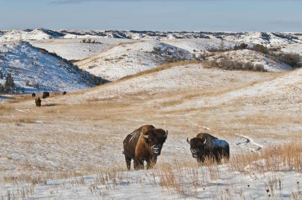 The most beautiful places to visit in North Dakota