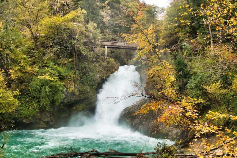 3) Vintgar Gorge 2
