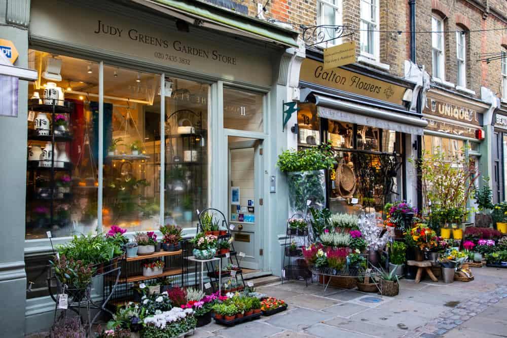 Pretty street in Hampstead London