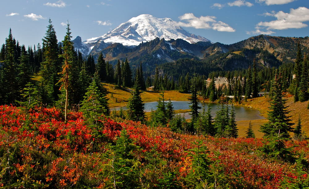 Mount Rainier National Park - best places to visit in July