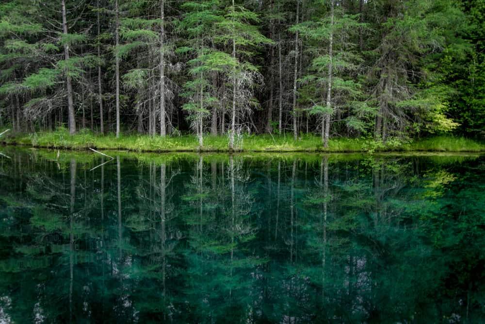 Pine River Michigan