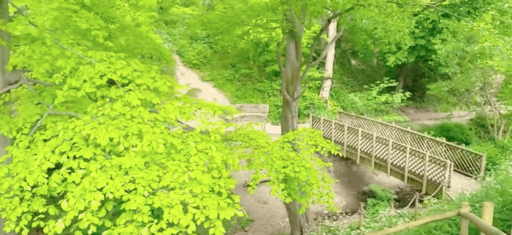 Northumberland Park Tyneside