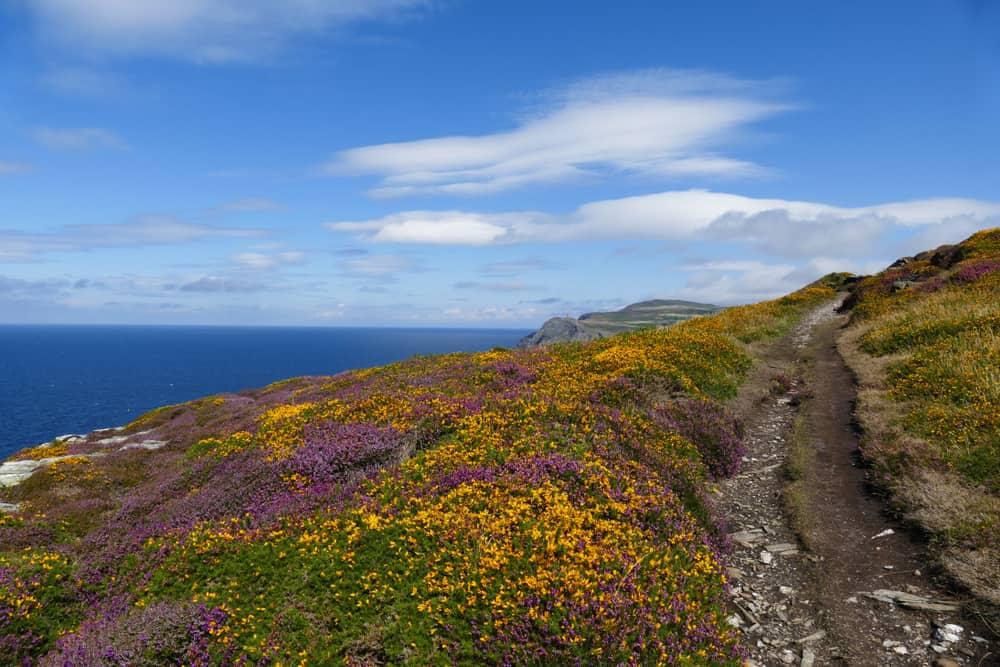 Road of the Gull Isle of Man