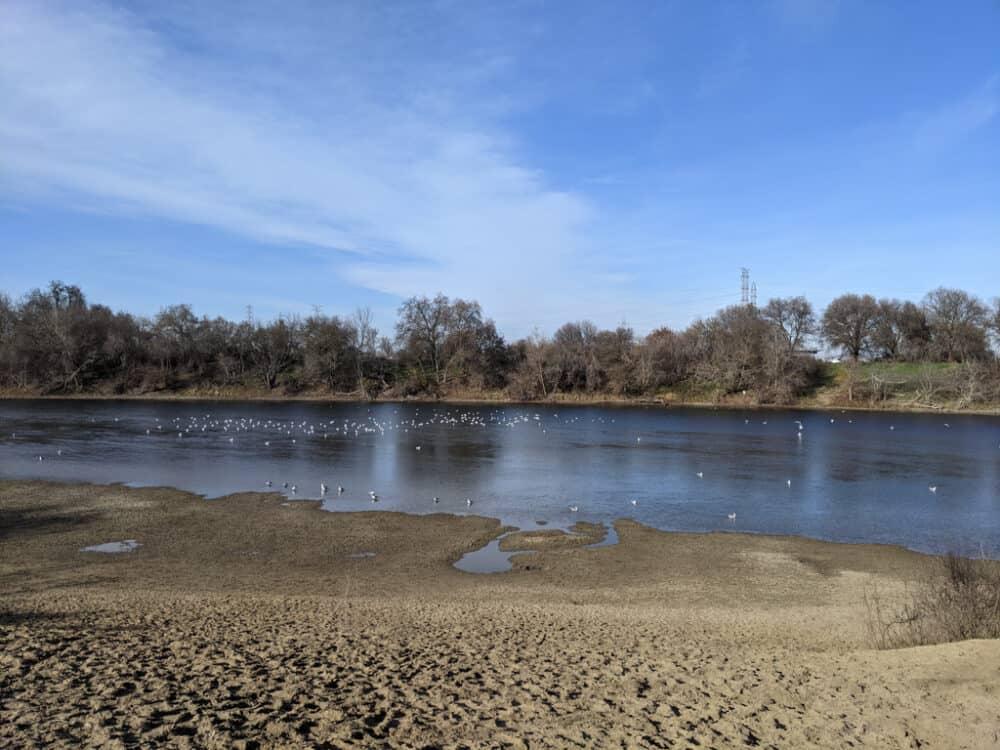 American River Sacramento