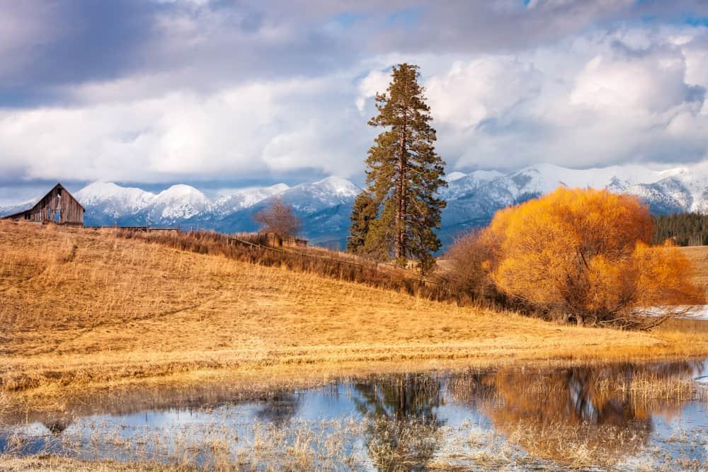 Bigfork in December USA