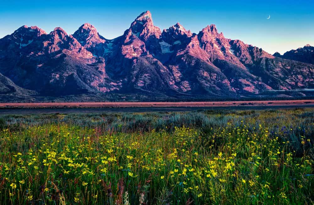 Grand Teton National Park Springtime USA