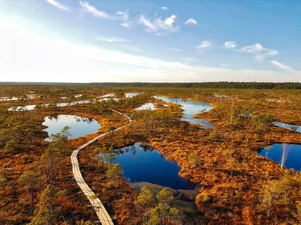 Great Kemeri Bog Latvia
