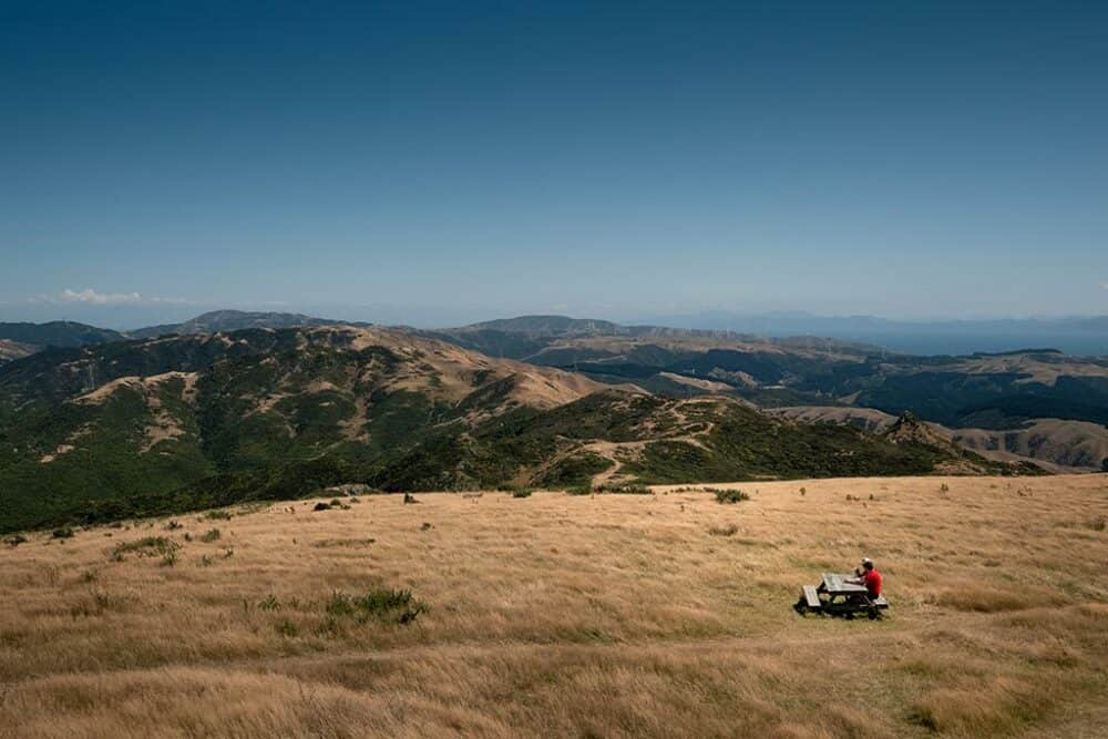 Mount Kaukau - things to do in Wellington
