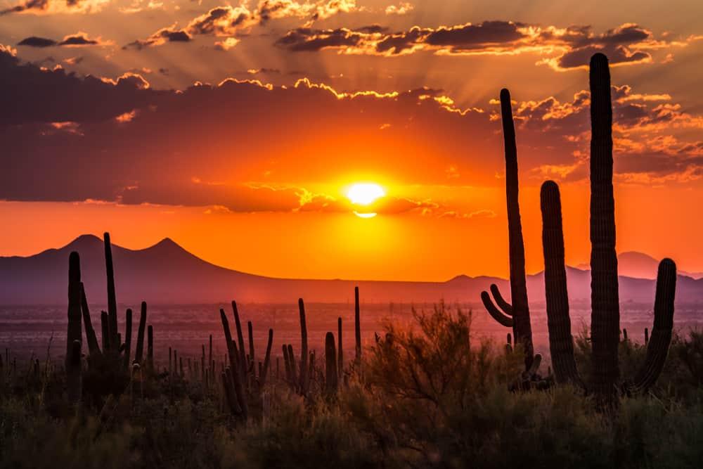 Tucson,Arizona USA