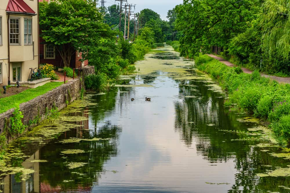 Delaware Canal New Hope