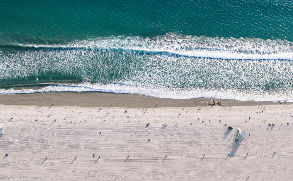 Surfing in Santa Monica