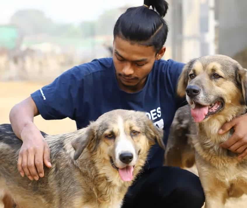 Animal Sanctuary India