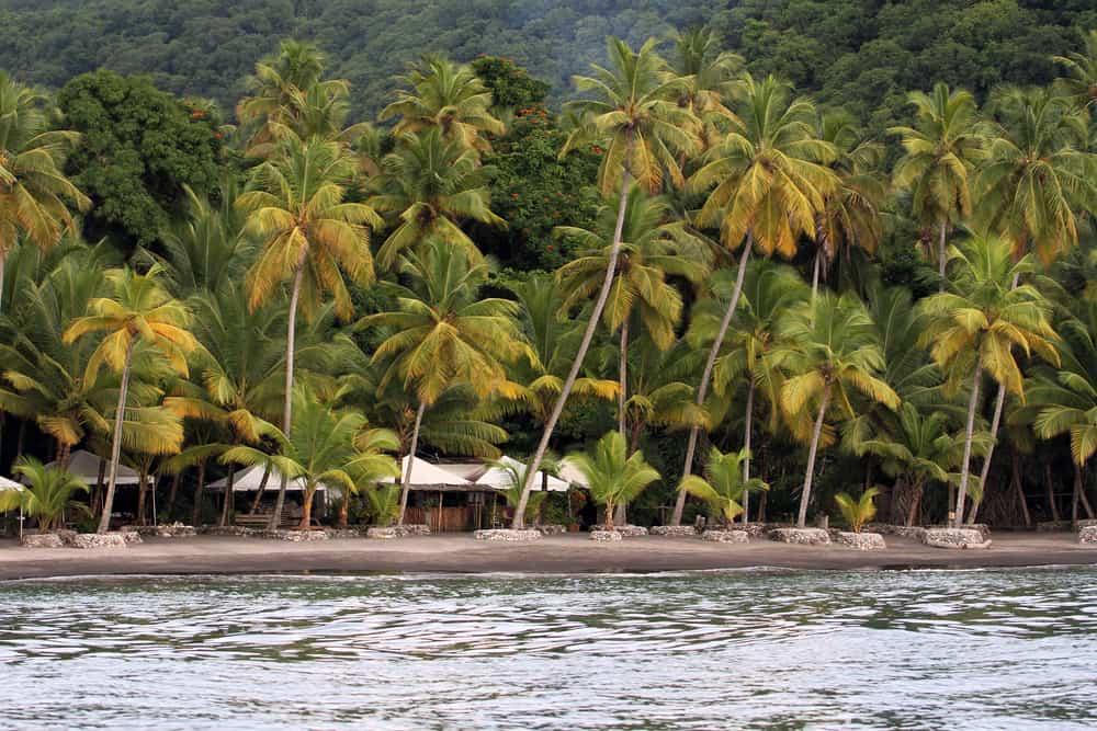 Anse Mamin St Lucia