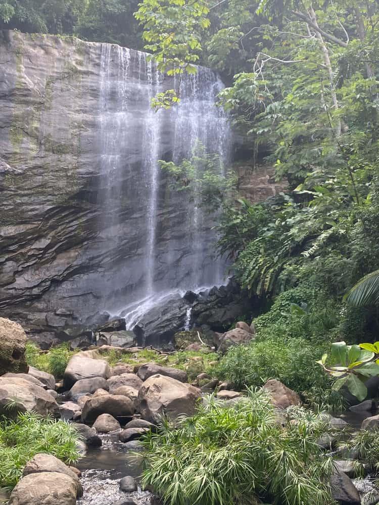 Royal Mount Carmel Falls