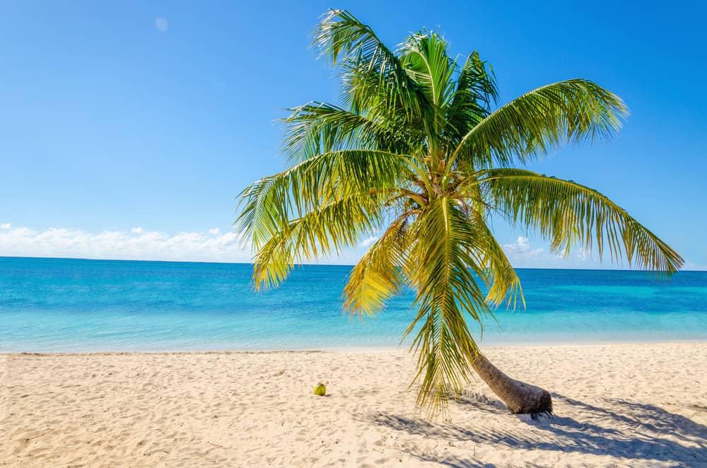 Sandy Beach St Lucia