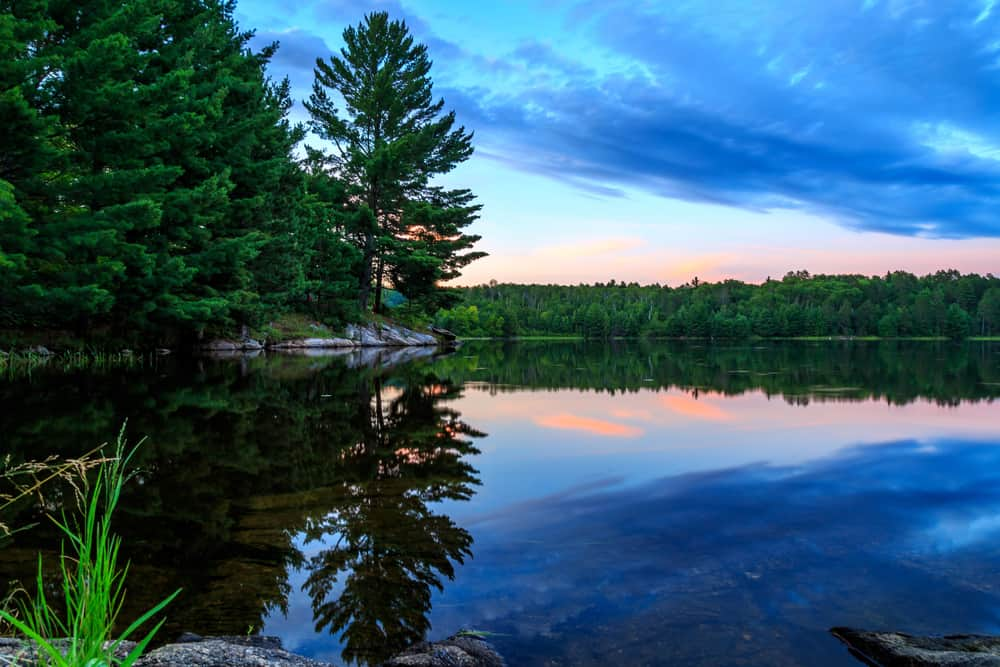 Voyageurs National Park in July